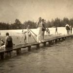 Zwemmen met zeehonden - Lineke Brands